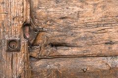 Venas de madera Fotos de archivo