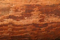 Venatura del legno Immagini Stock