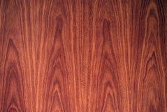 Venatura del legno drammatica Immagine Stock