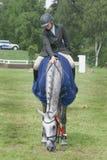 Vencedor de salto da competição do cavalo Fotografia de Stock Royalty Free