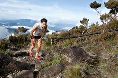 Vencedor Killian Burgada em Mt Kinabalu CLimbathon Imagem de Stock Royalty Free