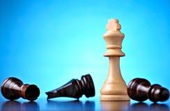 Vencimento na xadrez Imagem de Stock