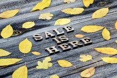 A venda da inscrição está aqui, o fundo de madeira, quadro das folhas amarelas imagem de stock