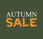 VENDA do outono Folhas do amarelo de ABC alfabeto outonal Fotos de Stock Royalty Free