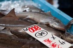 Venda do tubarão Imagens de Stock