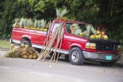 Venda fresca dos frutos tropicais do recolhimento Fotos de Stock Royalty Free