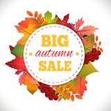 Venda grande do outono Fotografia de Stock Royalty Free