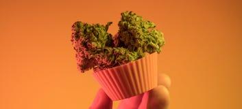 venda ilegal da marijuana em Europa e em Rússia nPlans para a legalização para 2018 imagens de stock royalty free