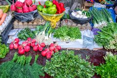 Venda no mercado dos verdes e dos vegetais imagens de stock royalty free