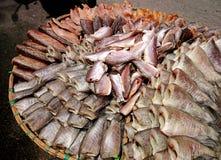 Venda secada dos peixes no mercado de peixes Imagens de Stock