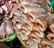 Venda secada dos peixes no mercado de peixes Imagens de Stock Royalty Free