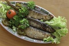 Vendace aan perfectie wordt en met salade en peterselie wordt gediend gerookt die die Royalty-vrije Stock Foto's