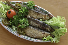Vendace smoked to perfection and served with salad and parsley Royalty Free Stock Photos