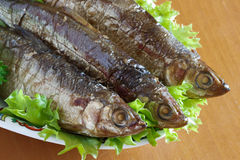 Vendace smoked to perfection and served with salad and parsley Stock Photography
