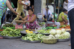 Vendedor ambulante de Vietnam Imagen de archivo libre de regalías