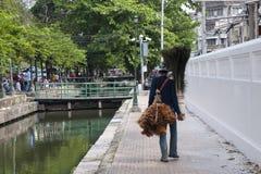 Vendedor ambulante que vende espanadores da pena e penas do pavão imagens de stock royalty free