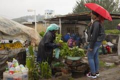 Vendedor ambulante que vende frutas e legumes frescas Fotografia de Stock