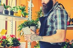 Vendedor barbudo brutal de la flor con los tatuajes en sus brazos en un flowe imagen de archivo