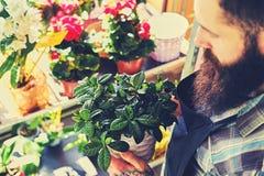 Vendedor barbudo brutal de la flor con los tatuajes en sus brazos en un flowe foto de archivo libre de regalías