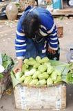 Vendedor da fruta do tribo do monte Fotografia de Stock