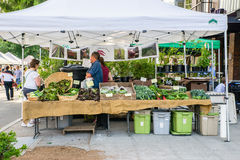 Vendedor da rainha Anne Farmers Market, exploração agrícola local das raizes fotos de stock