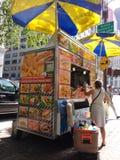 Vendedor de comida de la calle de New York City en la 5ta avenida cerca del Central Park, Midtown, Manhattan, NYC, NY, los E.E.U. Fotos de archivo libres de regalías