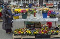 Vendedor de la flor en Zagreb, Croacia Fotos de archivo libres de regalías