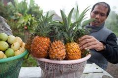 Vendedor de la fruta Fotos de archivo