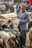 Vendedor de las cabras Imagenes de archivo