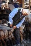 Vendedor de las cabras Fotos de archivo libres de regalías
