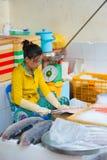 Vendedor de los pescados, Vietnam Fotografía de archivo