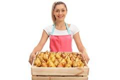 Vendedor de sexo femenino feliz que sostiene un cajón lleno de peras Foto de archivo