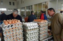 Vendedor del huevo Fotografía de archivo libre de regalías