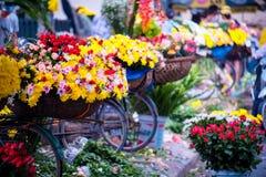Vendedor do florista de Vietname em Hanoi Foto de Stock Royalty Free