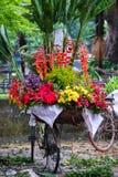 Vendedor do florista de Vietname em Hanoi Fotografia de Stock Royalty Free