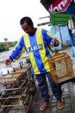 Vendedor do pássaro Foto de Stock