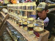 Vendedor dos peixes Fotografia de Stock Royalty Free