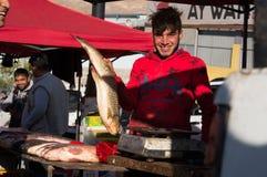 Vendedor dos peixes em Iraque Imagem de Stock