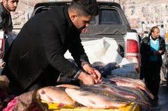 Vendedor dos peixes em Iraque Fotografia de Stock