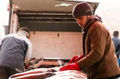 Vendedor dos peixes em Iraque Imagens de Stock Royalty Free