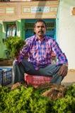 Vendedor indio Imagen de archivo libre de regalías