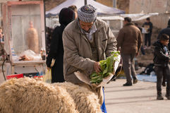 Vendedor iraquiano dos carneiros Imagem de Stock Royalty Free