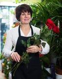 Vendedor que muestra rosas Imágenes de archivo libres de regalías