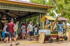 Vendedor rastafarian do fruto do coco e do cana-de-açúcar fotografia de stock royalty free