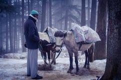 Vendedor @ Shimla do cavalo fotografia de stock