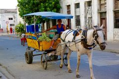 Vendedor vegetal, Cienfuegos, Cuba fotografia de stock royalty free
