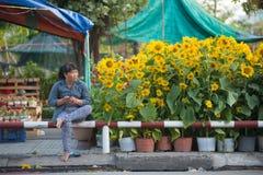 Vendedor vietnamiano dos girassóis Imagens de Stock Royalty Free