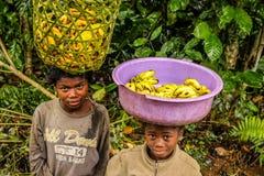 Vendedores novos da banana fotografia de stock