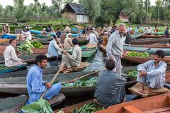 Vendedores vegetales no identificados que llevan su producción el mercado flotante temprano por la mañana en Dal Lake en Srinagar imágenes de archivo libres de regalías