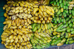 Vendendo a banana no mercado local Imagem de Stock